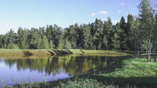 ЖК Лесной уголок